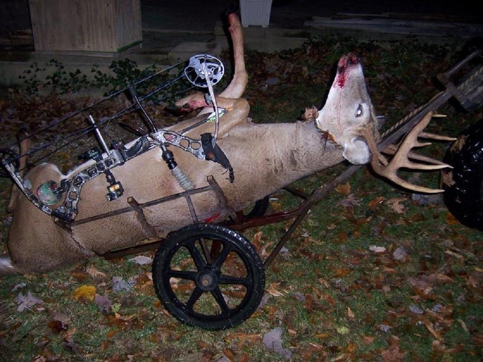 Deer hauling carts