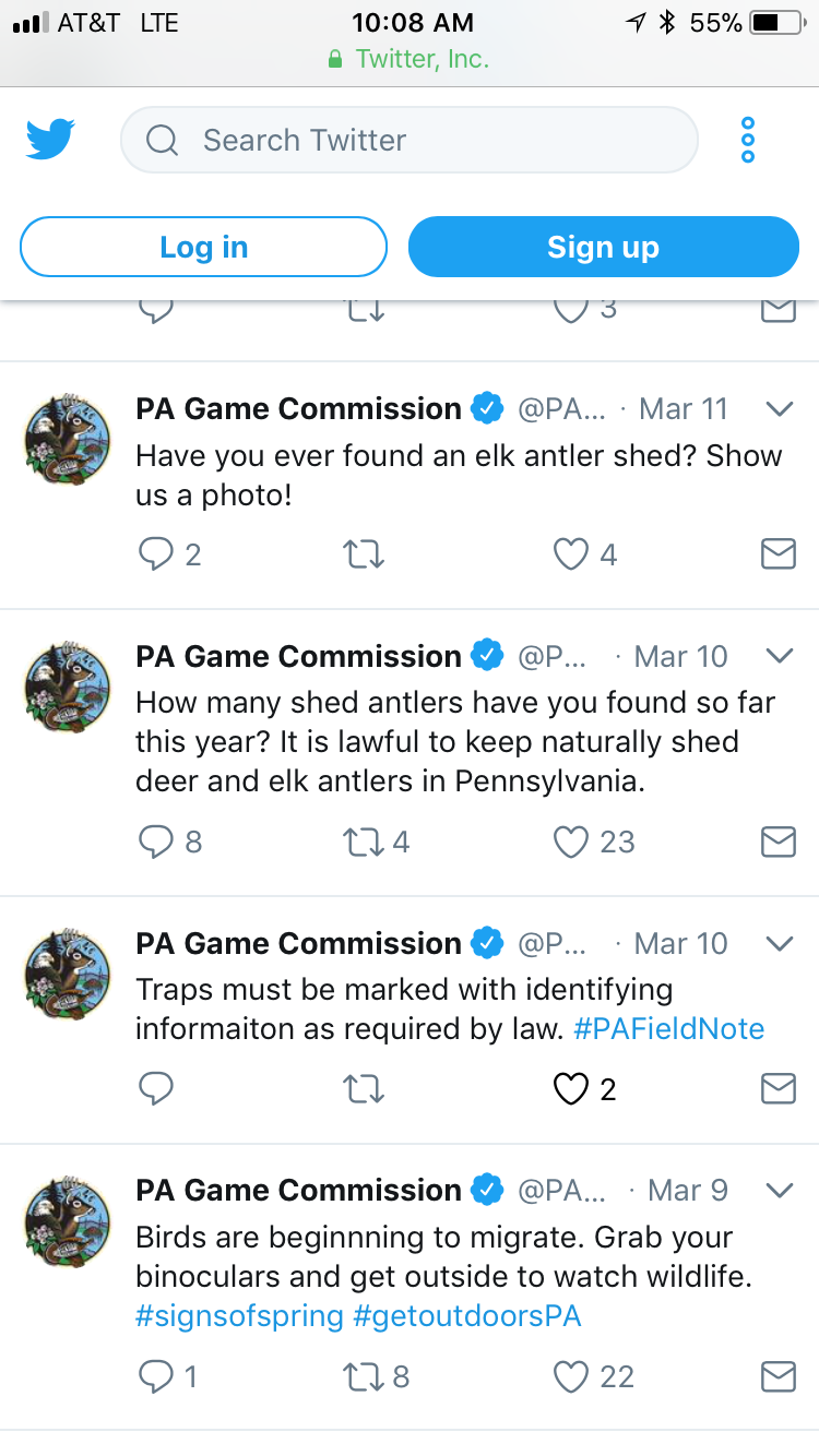 PA shed its antlers illegal to keep