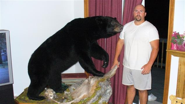 Prices on a full size mount for Canadian Black Bear?????
