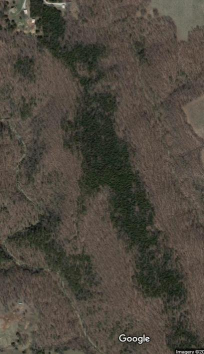 Click image for larger version.  Name:Potential Land.jpg Views:16 Size:43.9 KB ID:5903073