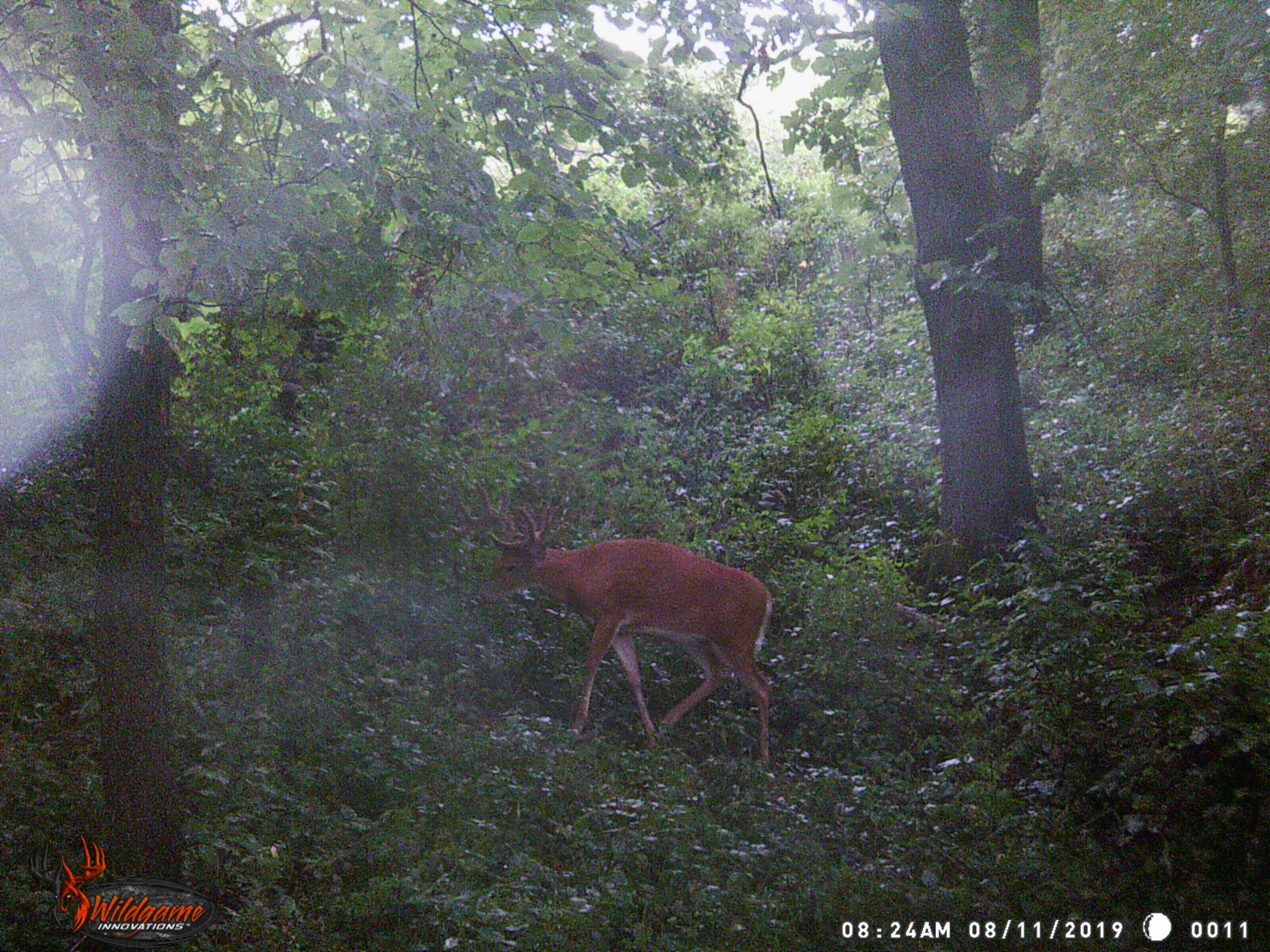 Click image for larger version.  Name:WGI_0011.jpg Views:N/A Size:835.0 KB ID:6902871
