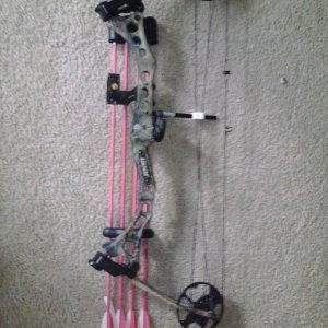 My first bow